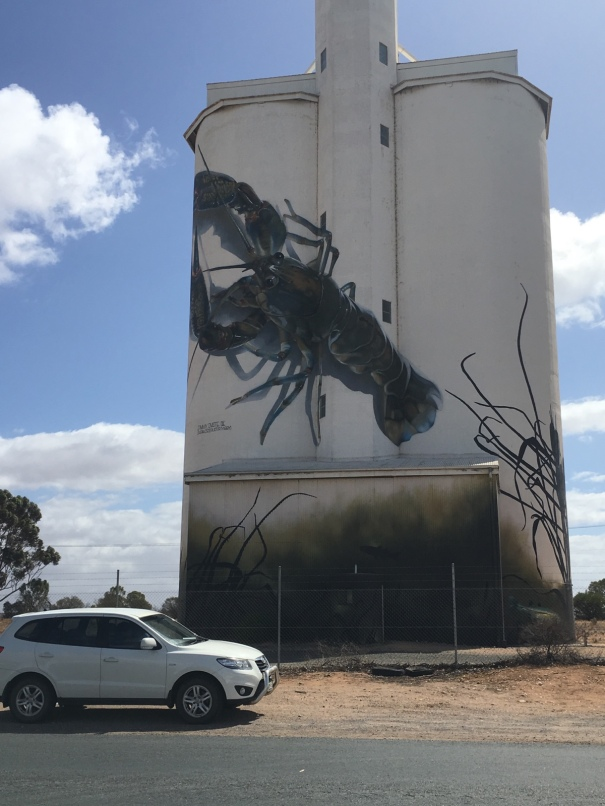 Painted Silos at Waikerie South Australia