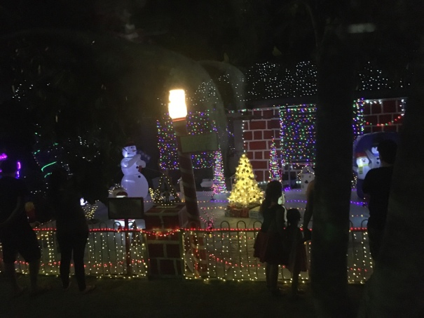 Christmas lights in Hervey Bay